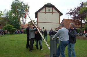 Die Birke mit den bunten Bändern, die den Maibaum ersetzte, wurde mit ein paar Helfern aufgerichtet. Auch Ortsbürgermeister Herbert Pape packte kräftig mit an.